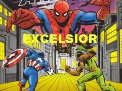 excelsior_1605_grid